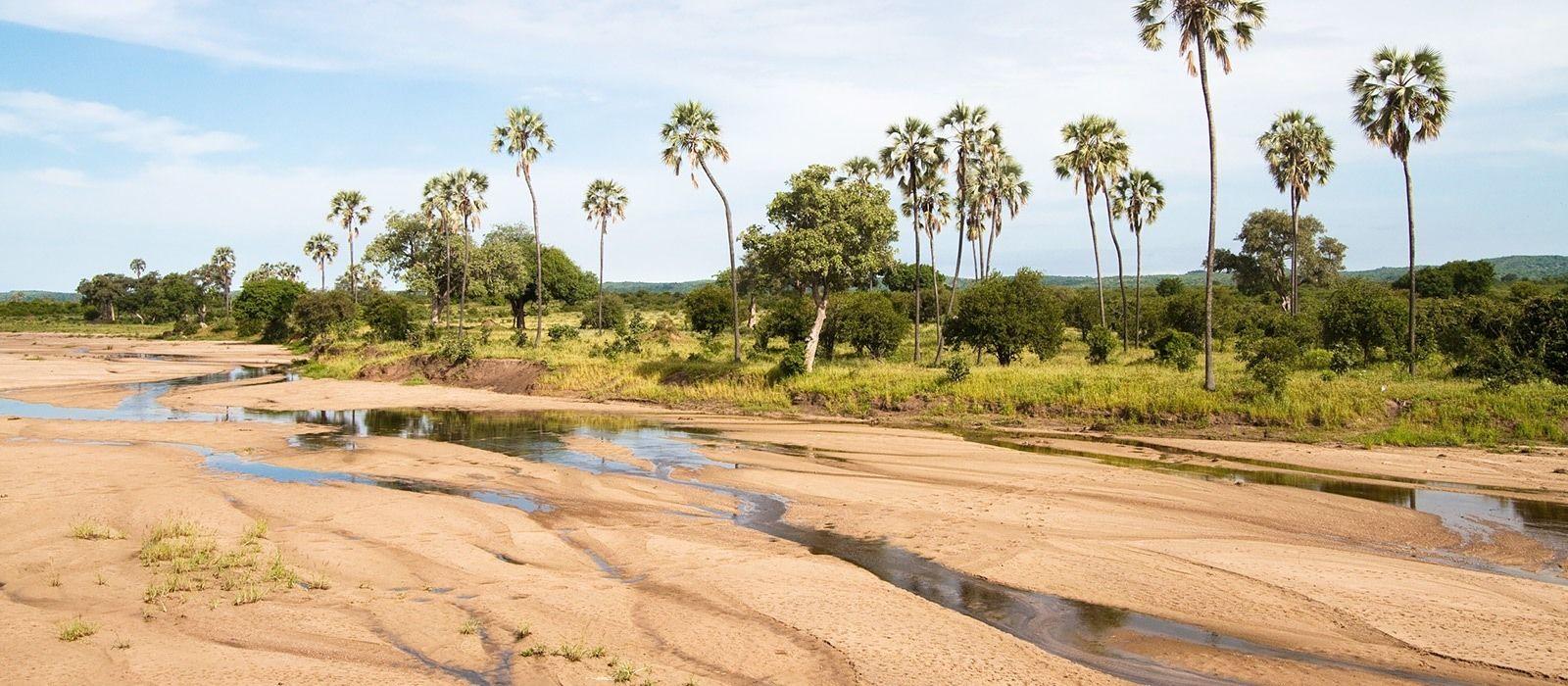 Authentic Tanzania: Wildlife and Pristine Beach Tour Trip 2