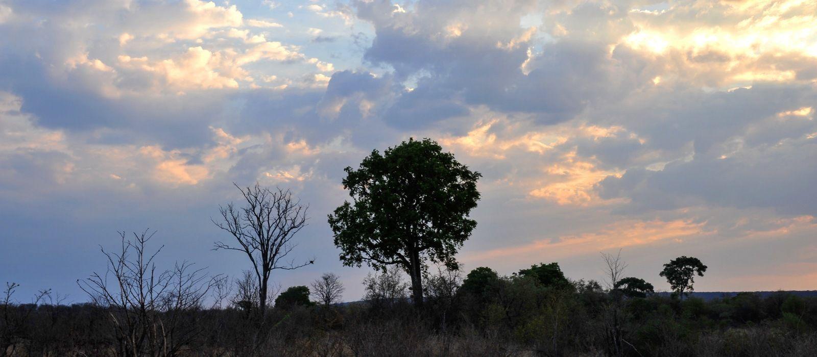 Klassische Safari Reise: Simbabwe & Botswana Urlaub 1