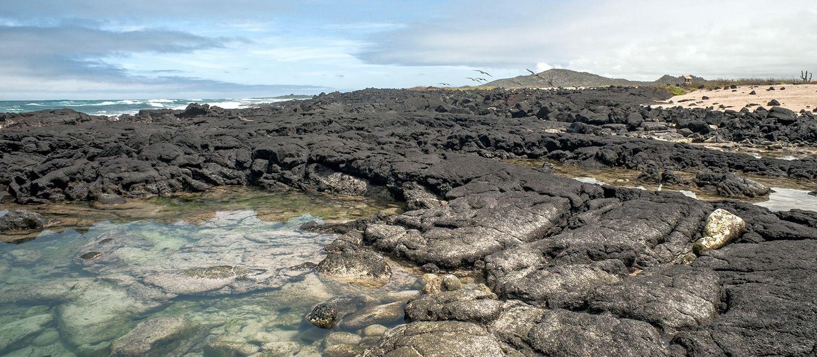 Destination Isla Isabela Ecuador/Galapagos