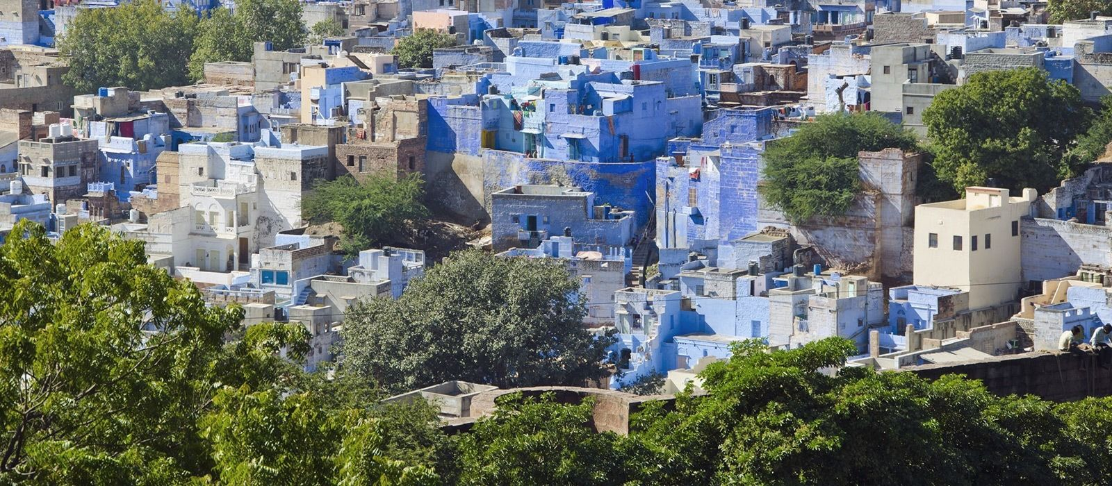 Destination Jodhpur North India