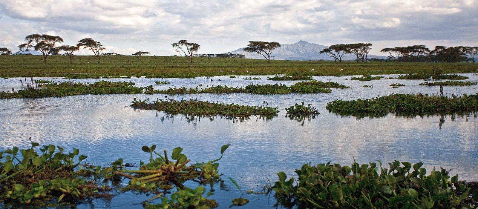 Masai Mara, Meru & Diani Beach – Safari & Strand in Kenia Urlaub 3