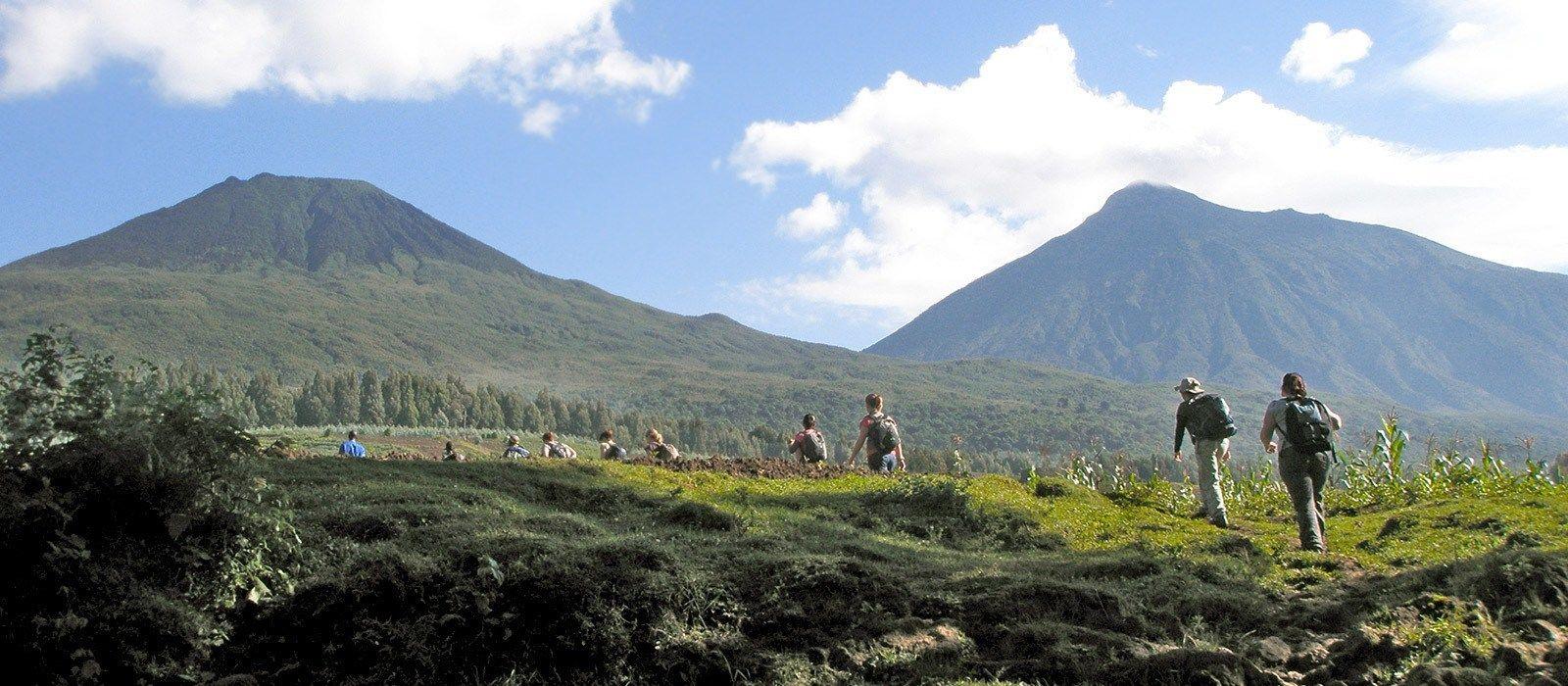 Gorilla Trekking in Rwanda Tour Trip 3