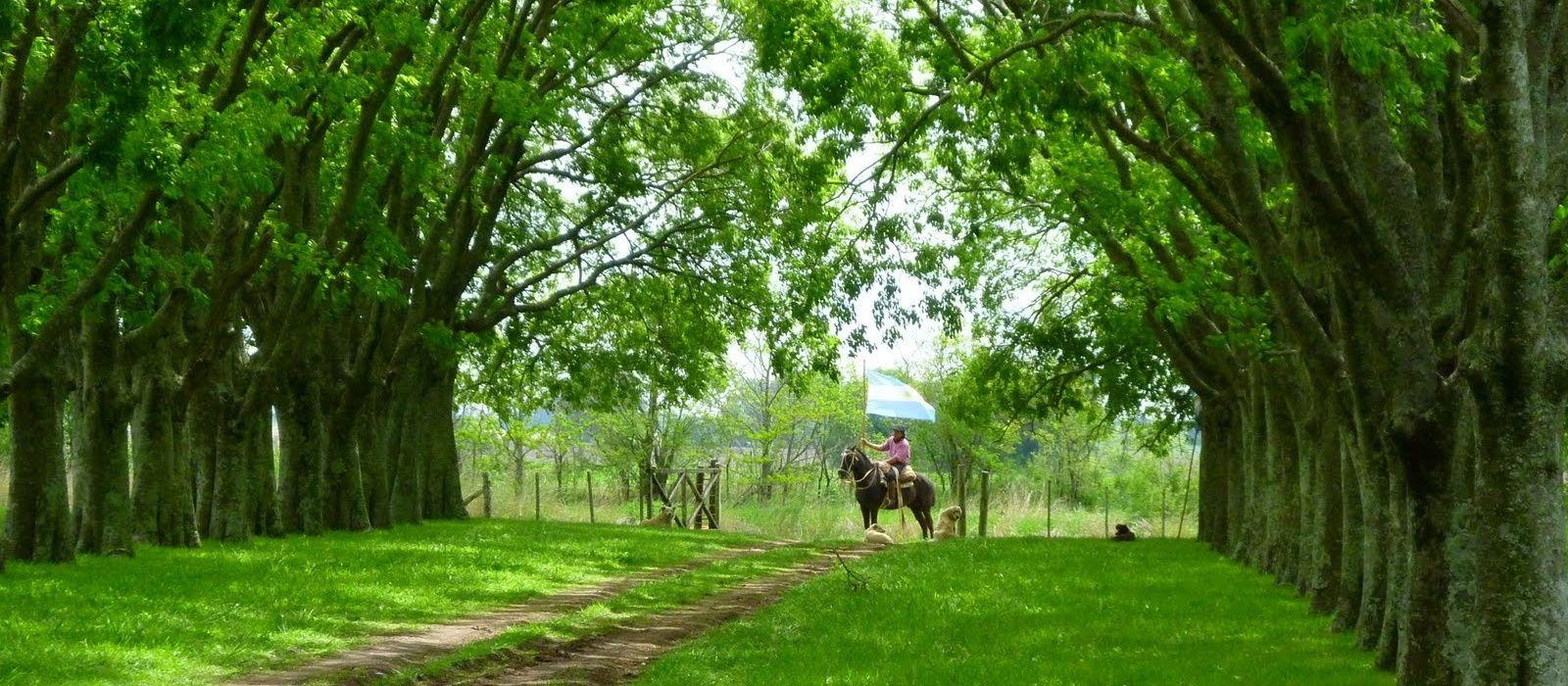 Destination Buenos Aires Province Argentina