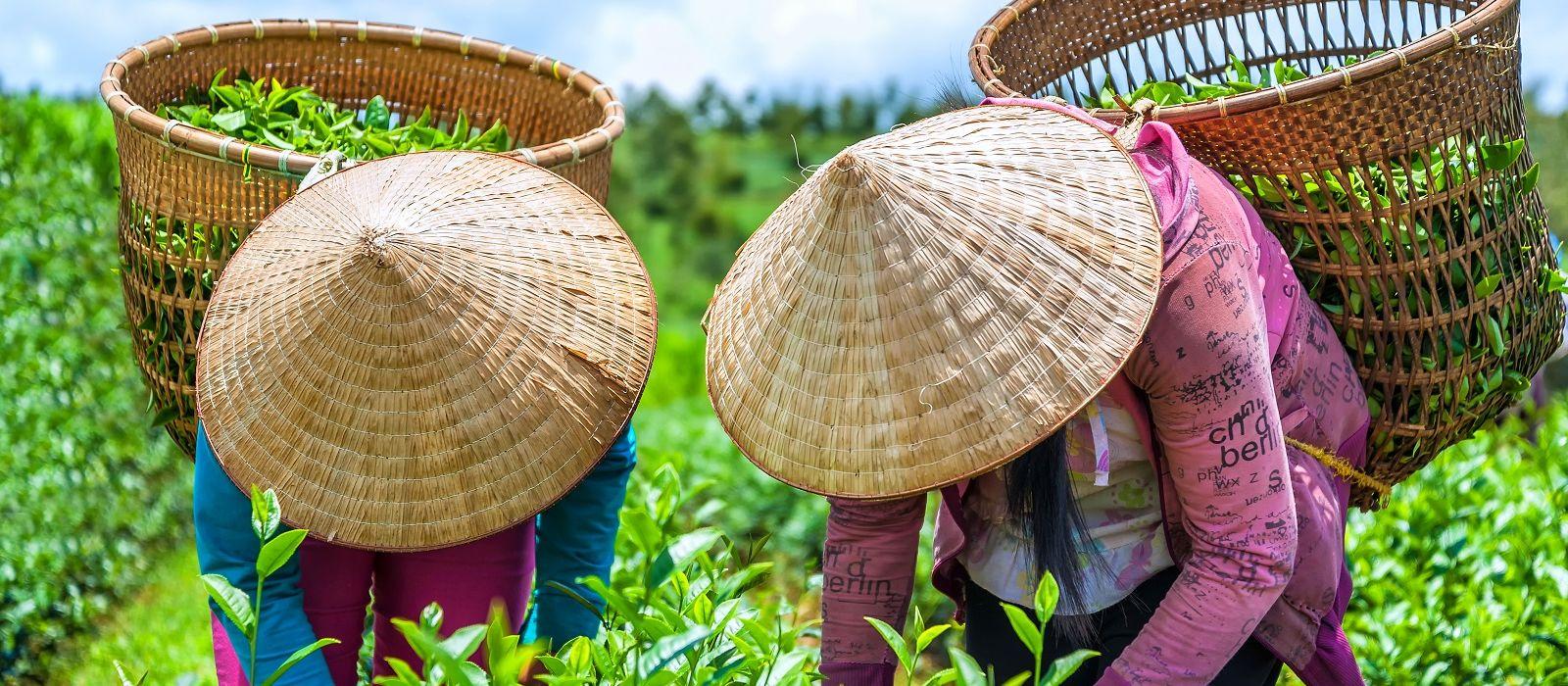 Individuelle Vietnam Rundreise Urlaub 7