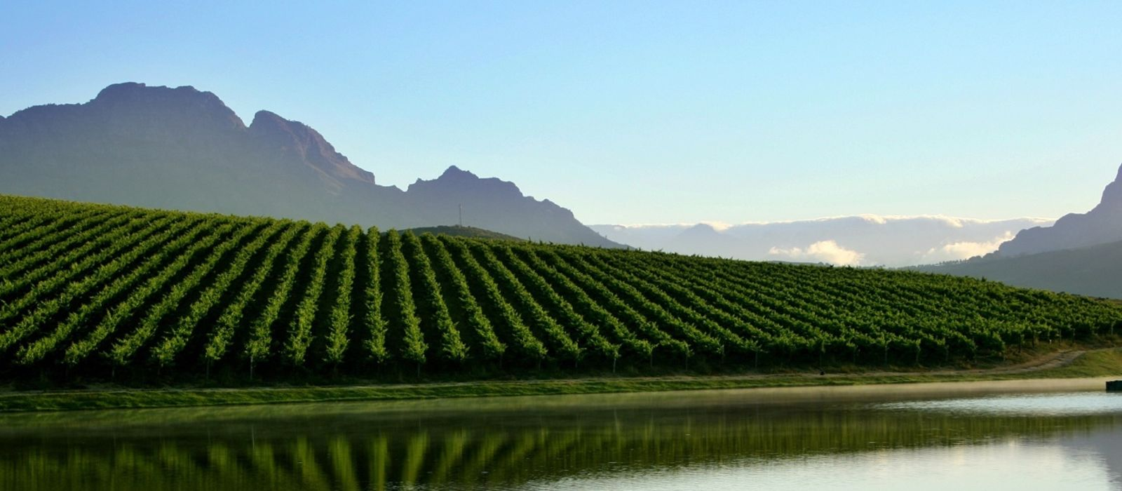 Dine with South Africa's Winemakers Tour Trip 1