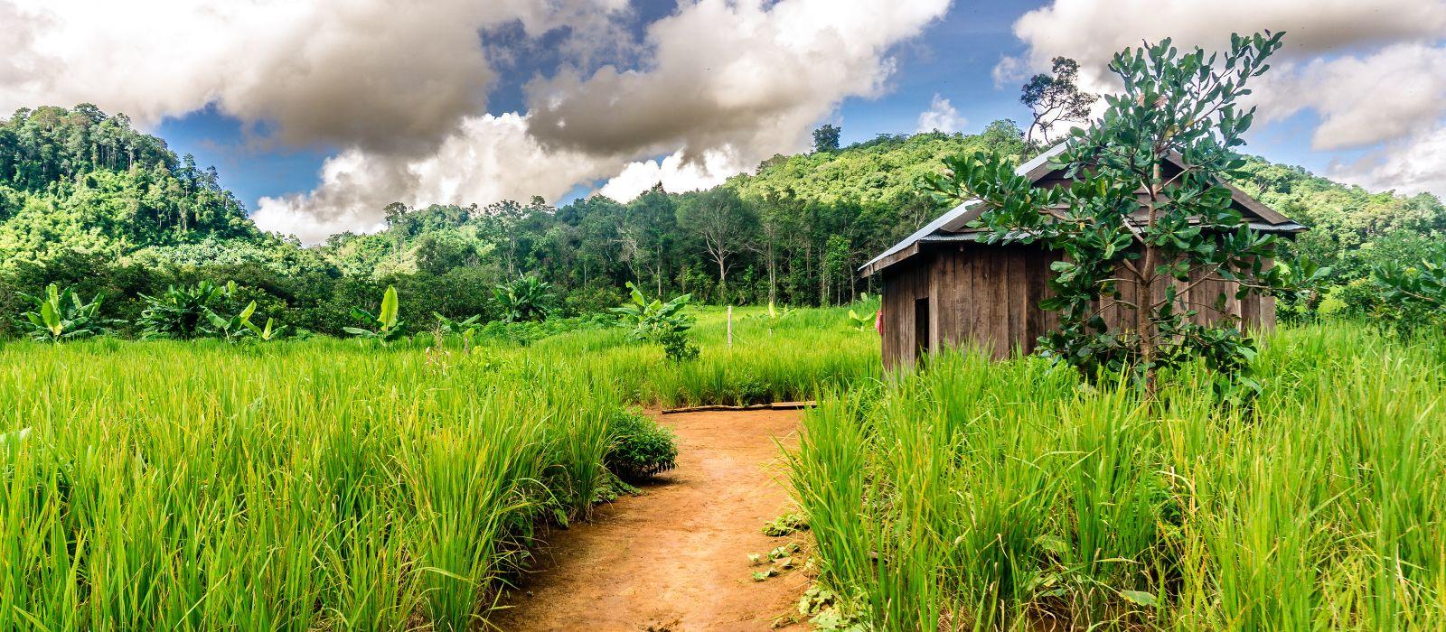 Reiseziel Mondulkiri Kambodscha