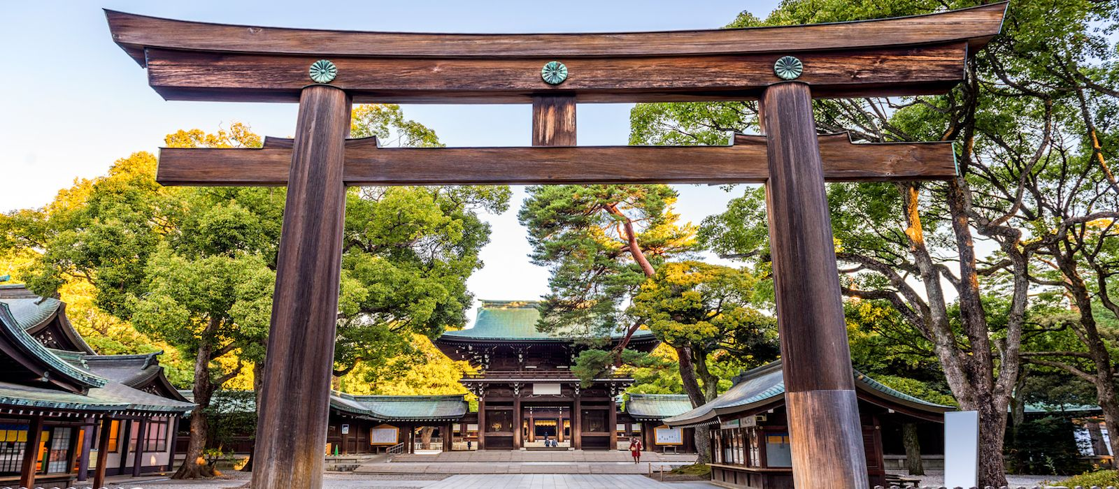 Exclusive Travel Tips for Your Destination Kyoto in Japan