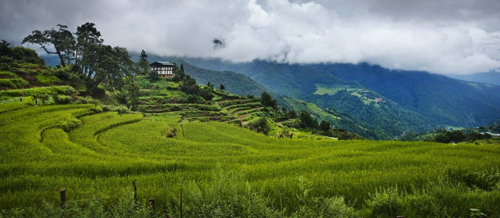 Luxury Bhutan & Thailand Paradise Islands Tour Trip 2