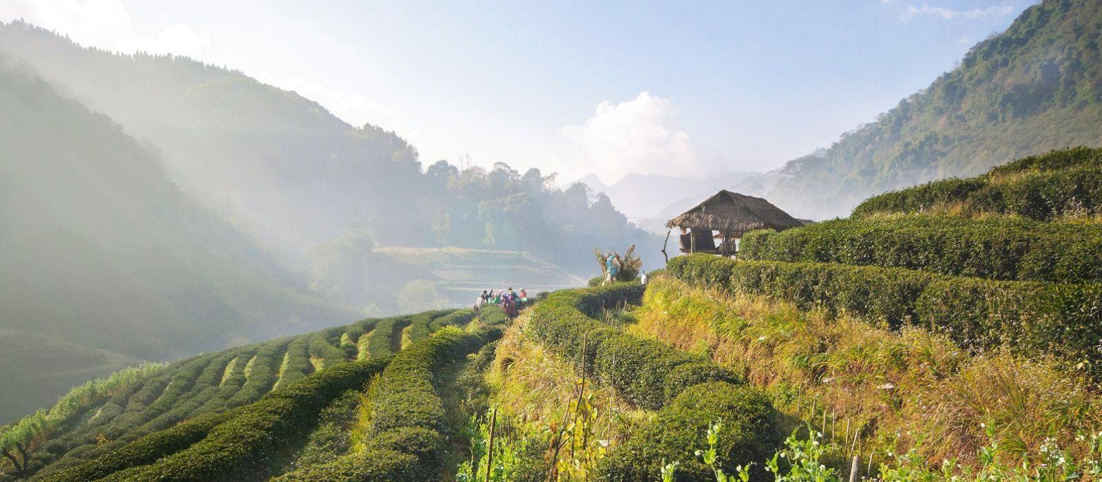 Thailand Kombireise: Geheimtipps entdecken – Sonderangebot Urlaub 6