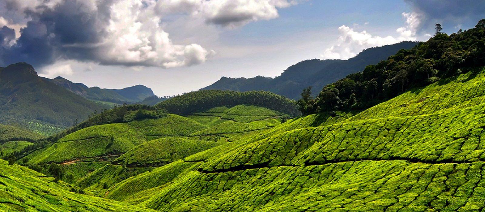 Highlights of Kerala and Dubai Tour Trip 1