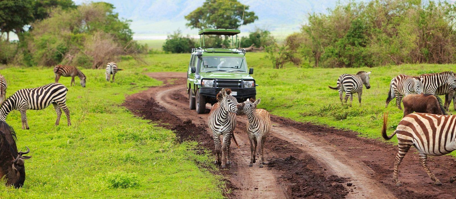 Highlights von Afrika Urlaub 2