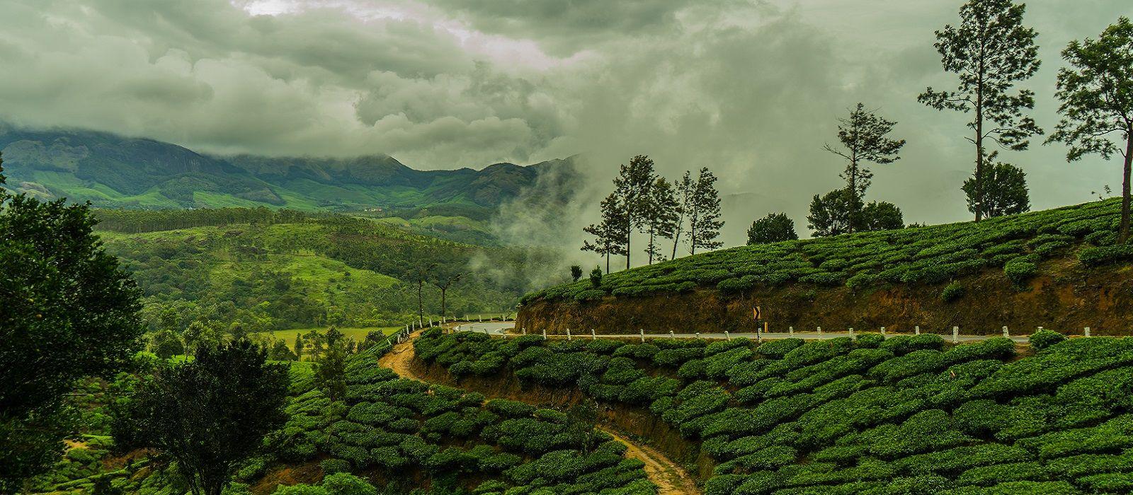 Backwaters to Beaches – Best of Kerala and Sri Lanka Tour Trip 3