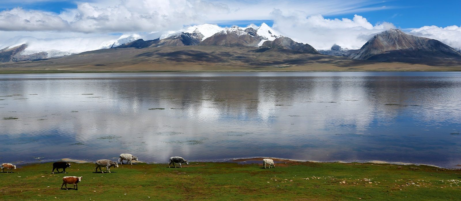 Destination Gyantse Tibet