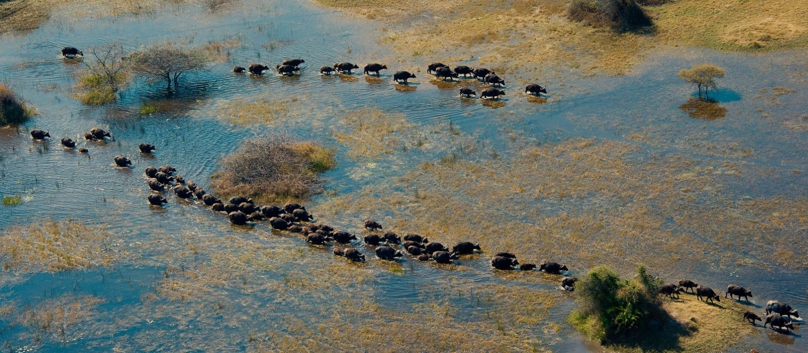 Wings Over Namibia, Victoria Falls and Botswana Tour Trip 6
