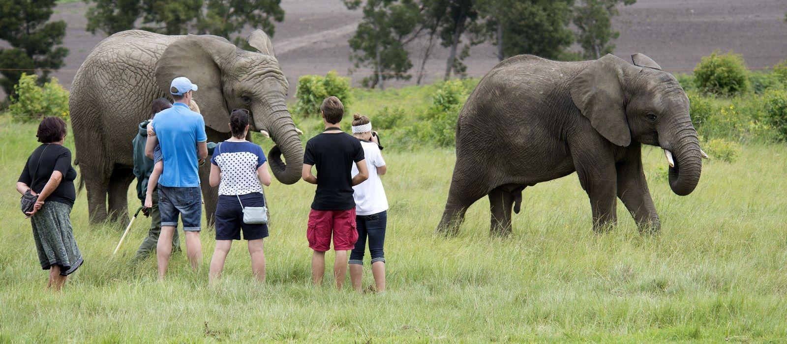 Safari Highlights of Tanzania, Botswana and Zambia Tour Trip 1