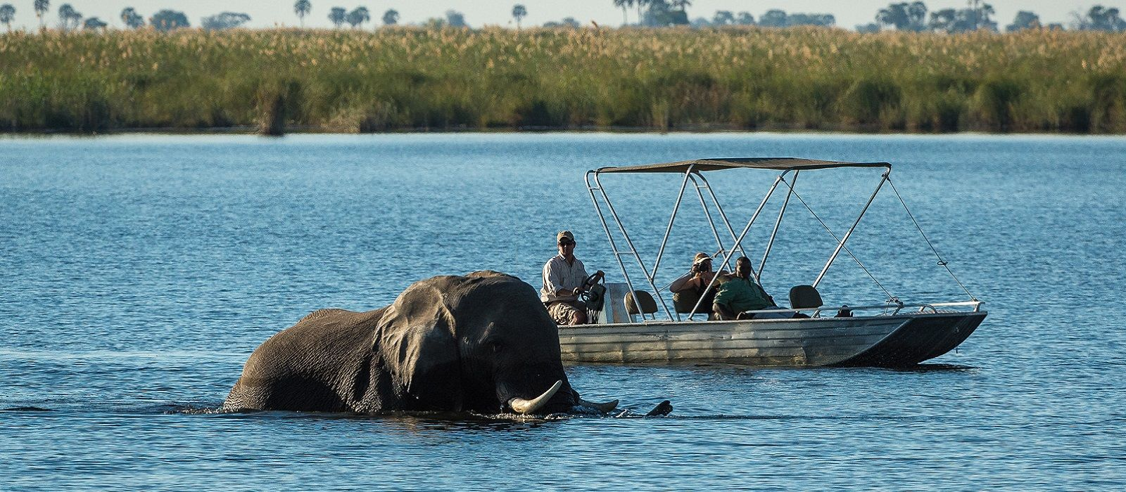 Tanzania, Zimbabwe and Botswana Safari Highlights Tour Trip 7