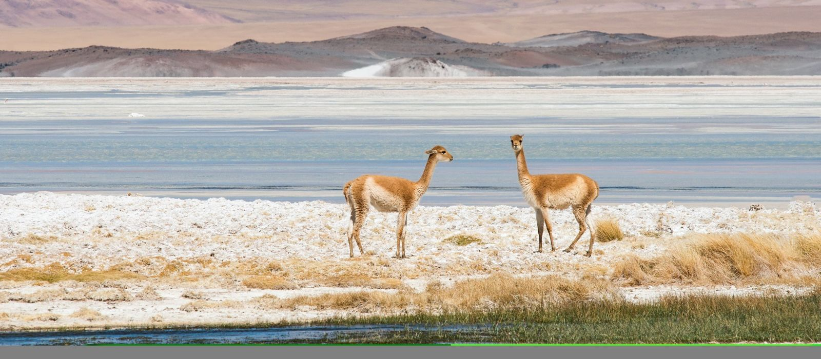 Einsame Wüsten, ewige Gletscher & geheimnisvolle Osterinsel – das Beste von Chile Urlaub 2