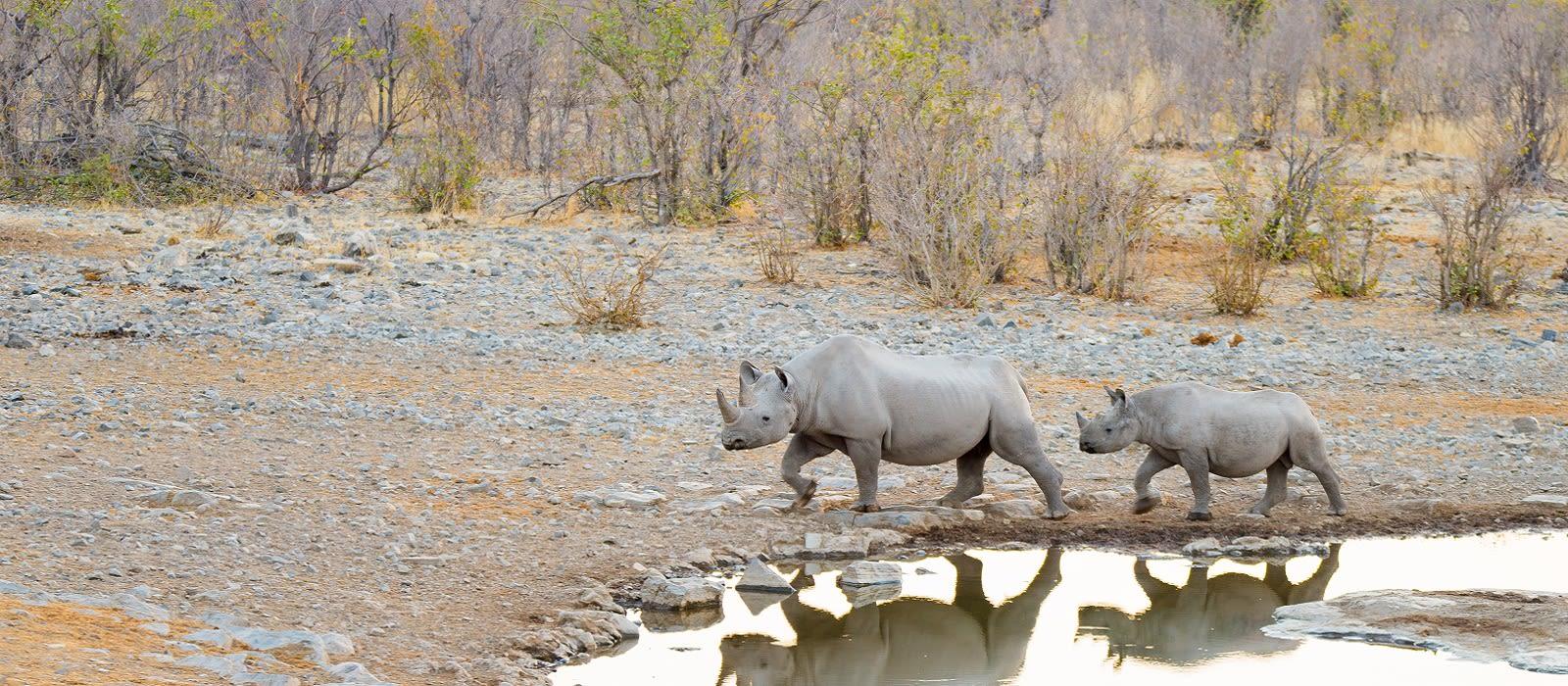Namibia: The Luxury Explorer Tour Trip 6