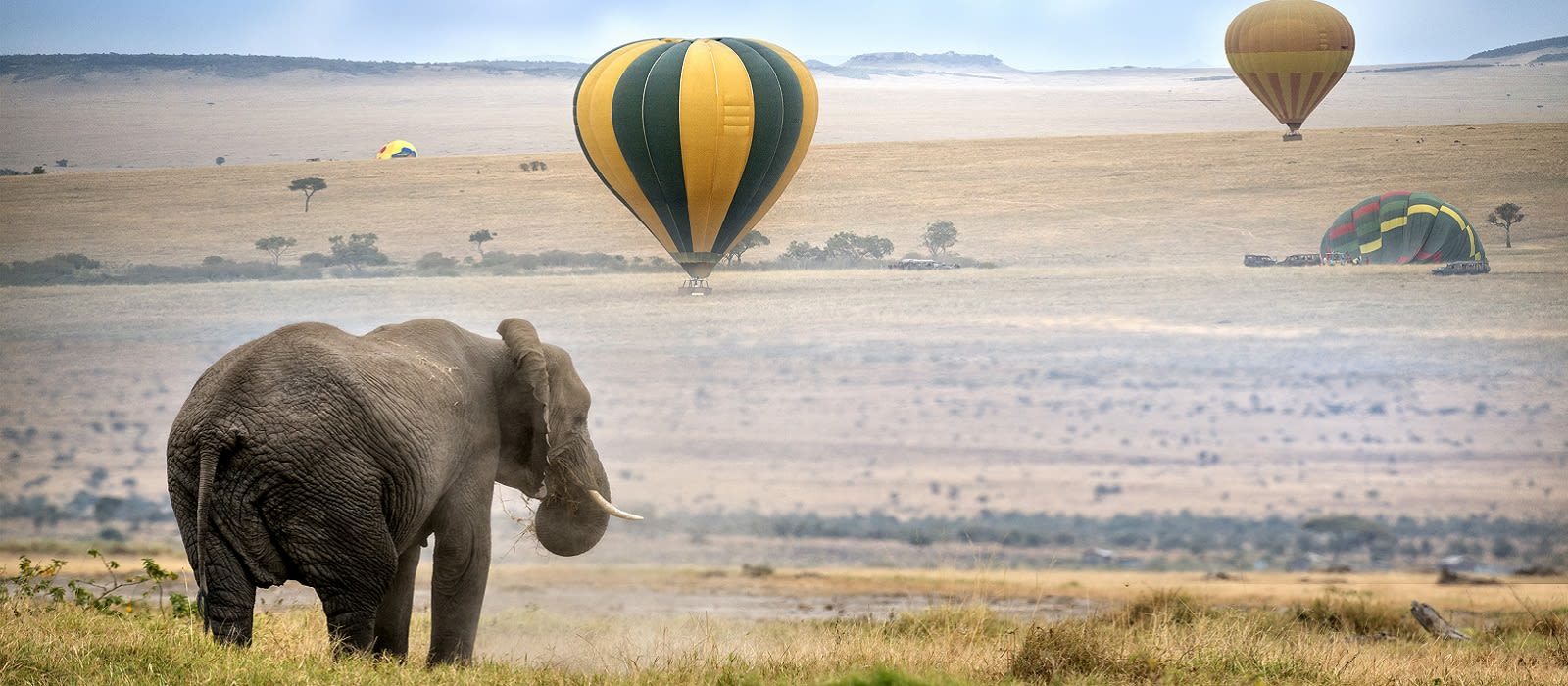 Classic Kenya: Samburu, Masai Mara and Beach Break Tour Trip 1