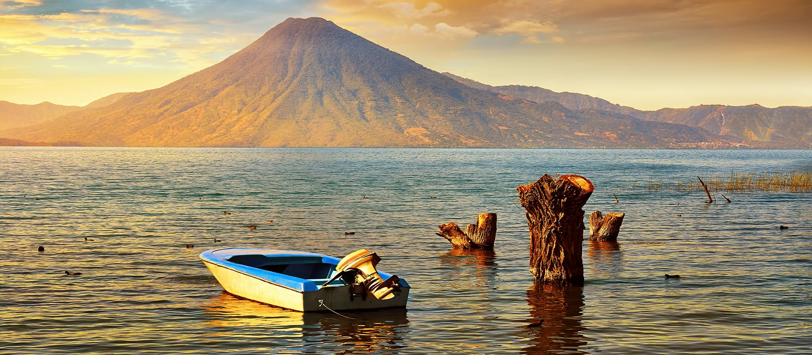 Exotische Vögel & Bezaubernde Landschaften – Vogelbeobachtung in Guatemala Urlaub 3