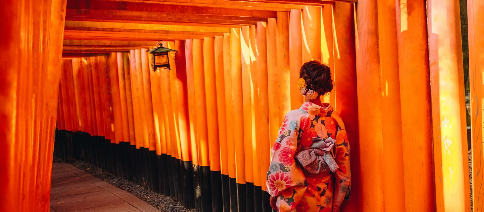 Japan's Hidden Treasures Tour Trip 5