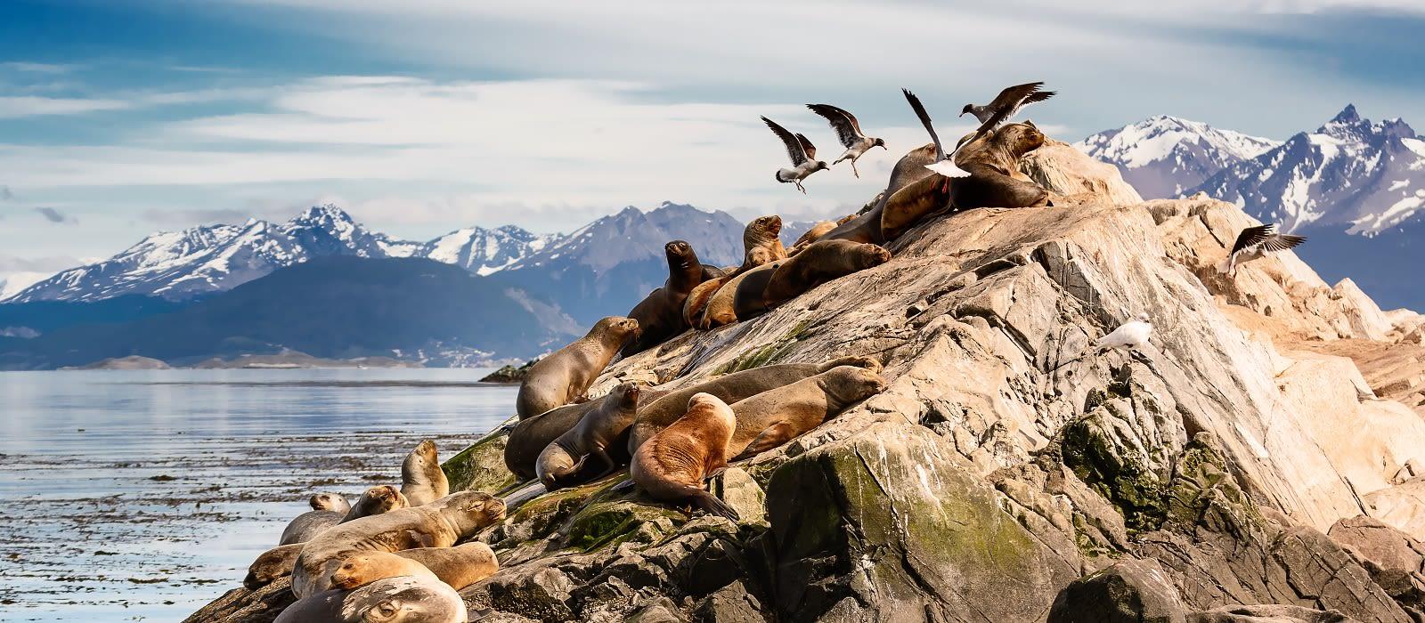 Die unberührte Schönheit Patagoniens & Abstecher in die Antarktis Urlaub 1
