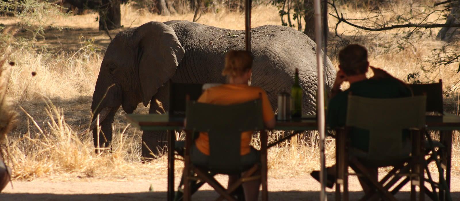 Tanzania – Luxury Safari and Barefoot Paradise Tour Trip 4