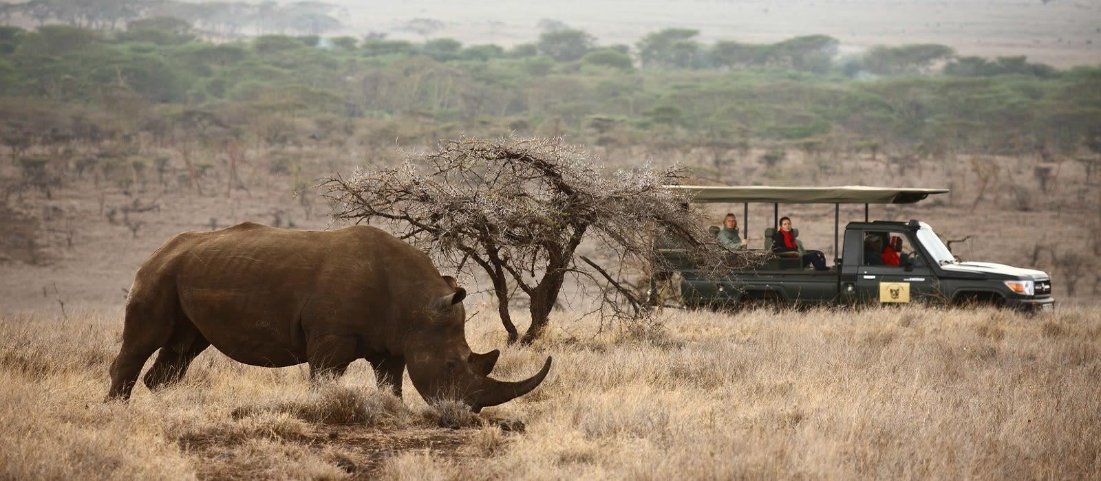 Kenia: Wandersafari & Strand Urlaub 2