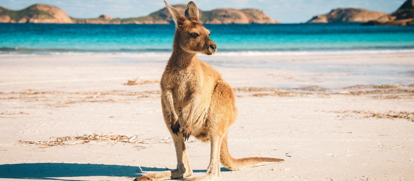 Australia: Cities, National Parks & Beaches Tour Trip 1