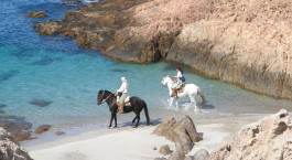 Reiseziel Bahia Bustamante Argentinien