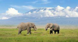 Destination Kilimanjaro Tanzania