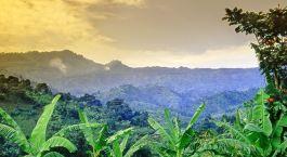 Reiseziel Mount Elgon Uganda