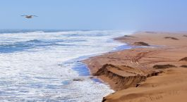 Reiseziel Skeleton Coast Namibia