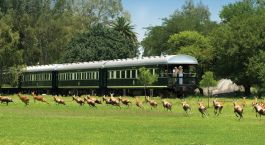 Destination Rovos Rail (Pretoria – Cape Town) South Africa