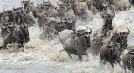 Reiseziel Südliche Serengeti Tansania