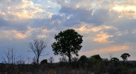 Destination Hwange Zimbabwe