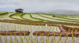 Destination Muang La Laos