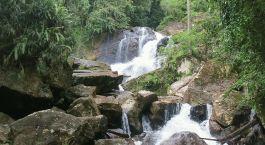 Reiseziel Regenwald Sri Lanka