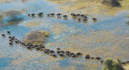 Destination Serowe Botswana