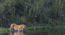 Reiseziel Rajkot Zentral- & Westindien