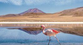 Reiseziel Uyuni Bolivien