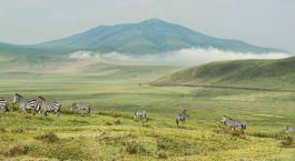Destination Udzungwa Tanzania