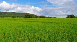 Destination Hubli South India