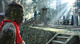 Destination Koyasan Japan