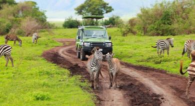 Empfohlene Individualreise, Rundreise: Highlights von Afrika