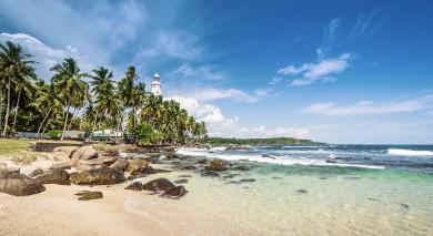 Empfohlene Individualreise, Rundreise: Sri Lanka: Kultur, Strände & Tierwelt