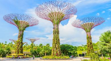 Empfohlene Individualreise, Rundreise: Indonesien vom Feinsten: Im Land der Tausend Inseln