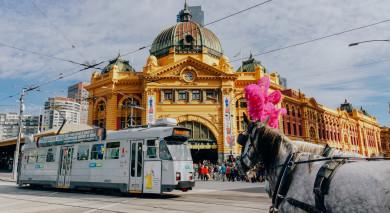 Empfohlene Individualreise, Rundreise: Australien – Strände, Städte & Natur