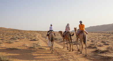 Example private tour: Best of Oman