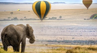 Example private tour: Classic Kenya: Samburu, Masai Mara and Beach Break